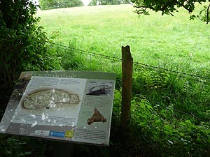 Information Board at Caynham Camp