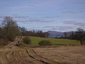 The Clee Hills in the Distance viewed from Halton Lane